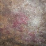 Mold; Commercial Inspections; Moisture Testing