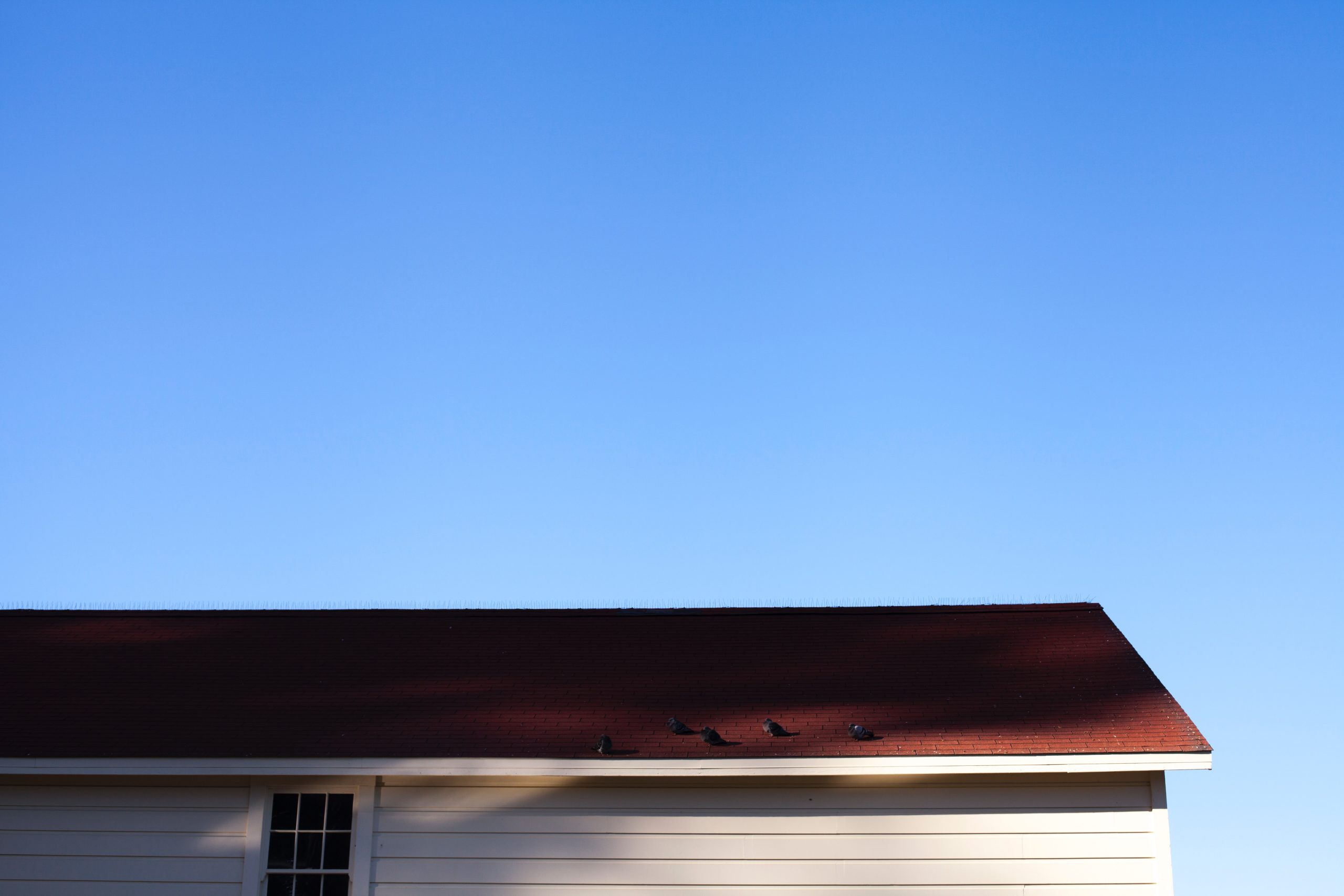 Roof Inspection; Iowa; Home Inspection